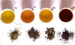 How It's Made: Black Tea, Green Tea & Herbal Tea