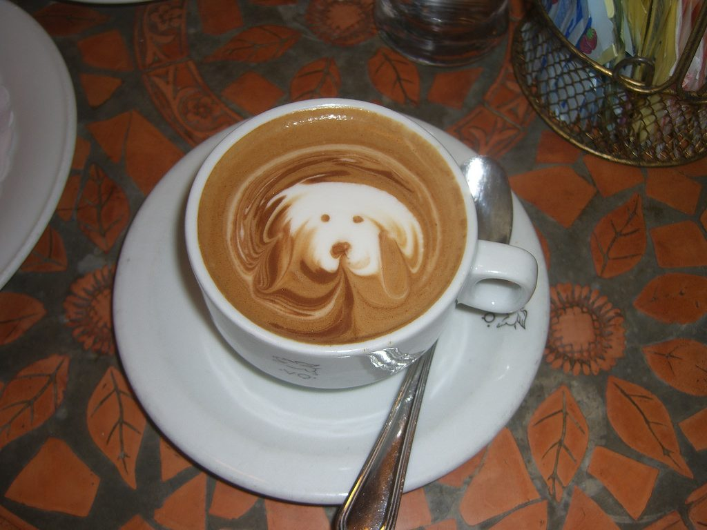 Can A Dog Have Caffeine